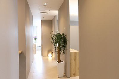 全室個室・半個室での治療・カウンセリング
