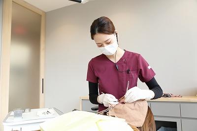 Bio Dental Clinic ASHIYAでの歯周病診査・診断